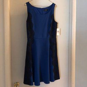 Jessica Simpson navy and black dress.